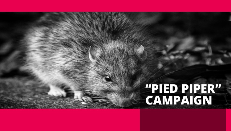 "Morphisec Uncovers Global ""Pied Piper"" Campaign"